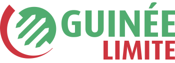 Guinée Limite | Toute l'actualité guinéenne en temps réel !