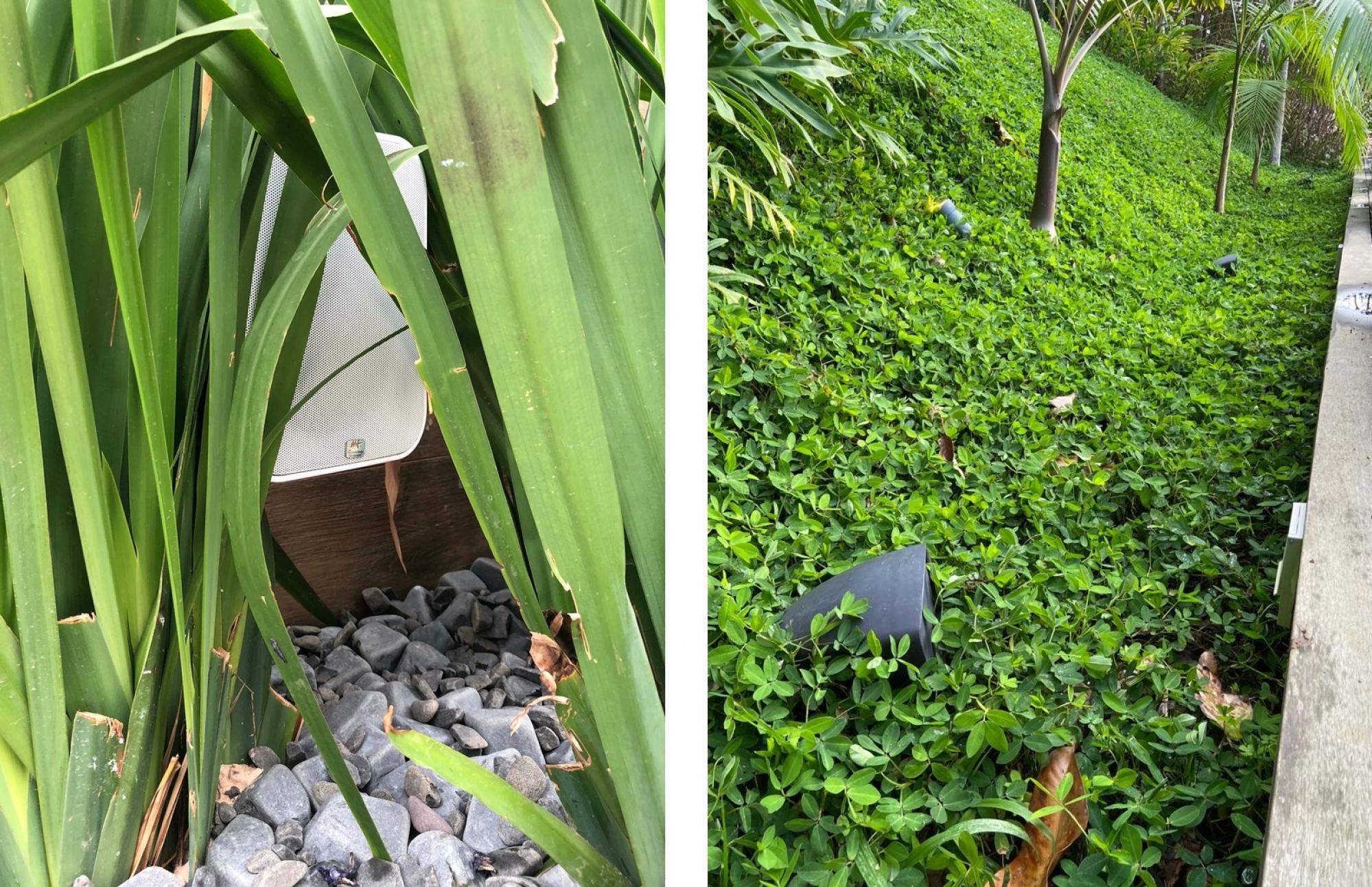 Som para área externa ou gourmet escondido na grama